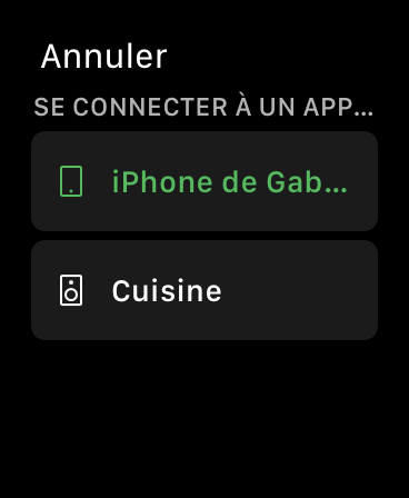 Spotify Connect Apple Watch